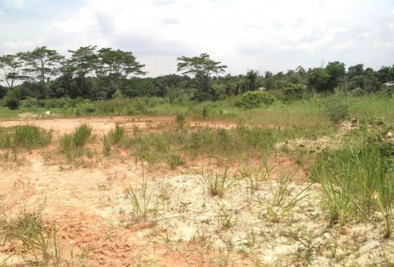 Johor Factory Malaysia Industry Seelong-Land-for-sell-PTR-7-560x380 土地 Land