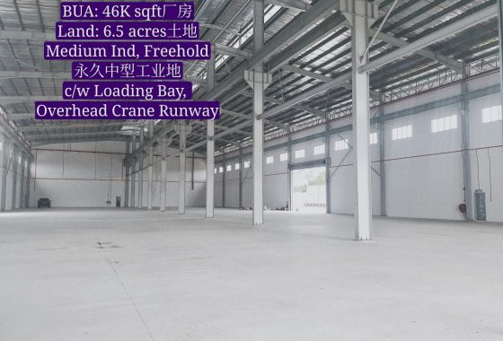Johor Factory Malaysia Industry 20200608_141719_mh1591868317752-560x380 Senai Area Freehold Detached Factory with 12 meter Height, 6.5 acres Land, Loading Bay and Overhead Crane Runway For Rent (BT-PTR43)