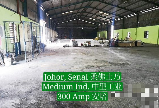 Johor Factory Malaysia Industry IMG-20191105-WA0032_mh1573803740239-2-560x380 出租 For Rent